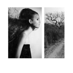COLLAGE 010.2015 © danii kessjan.collage